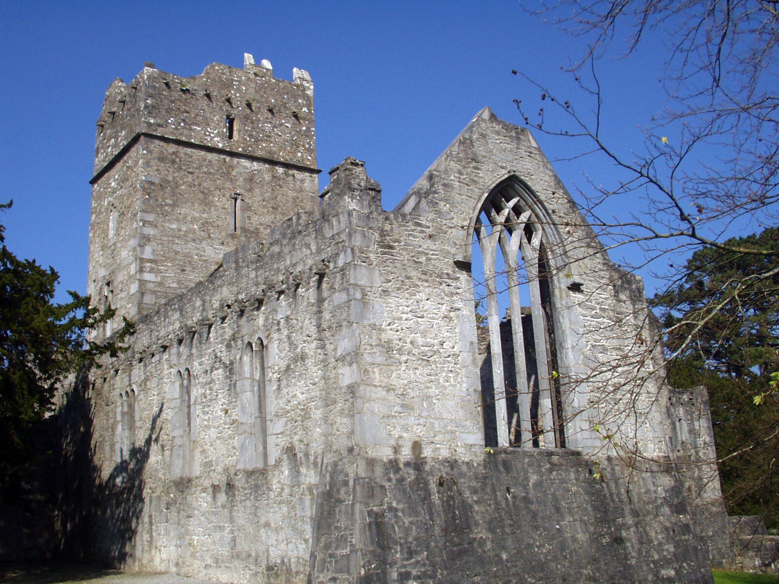 Things to Do - Muckross Abbey