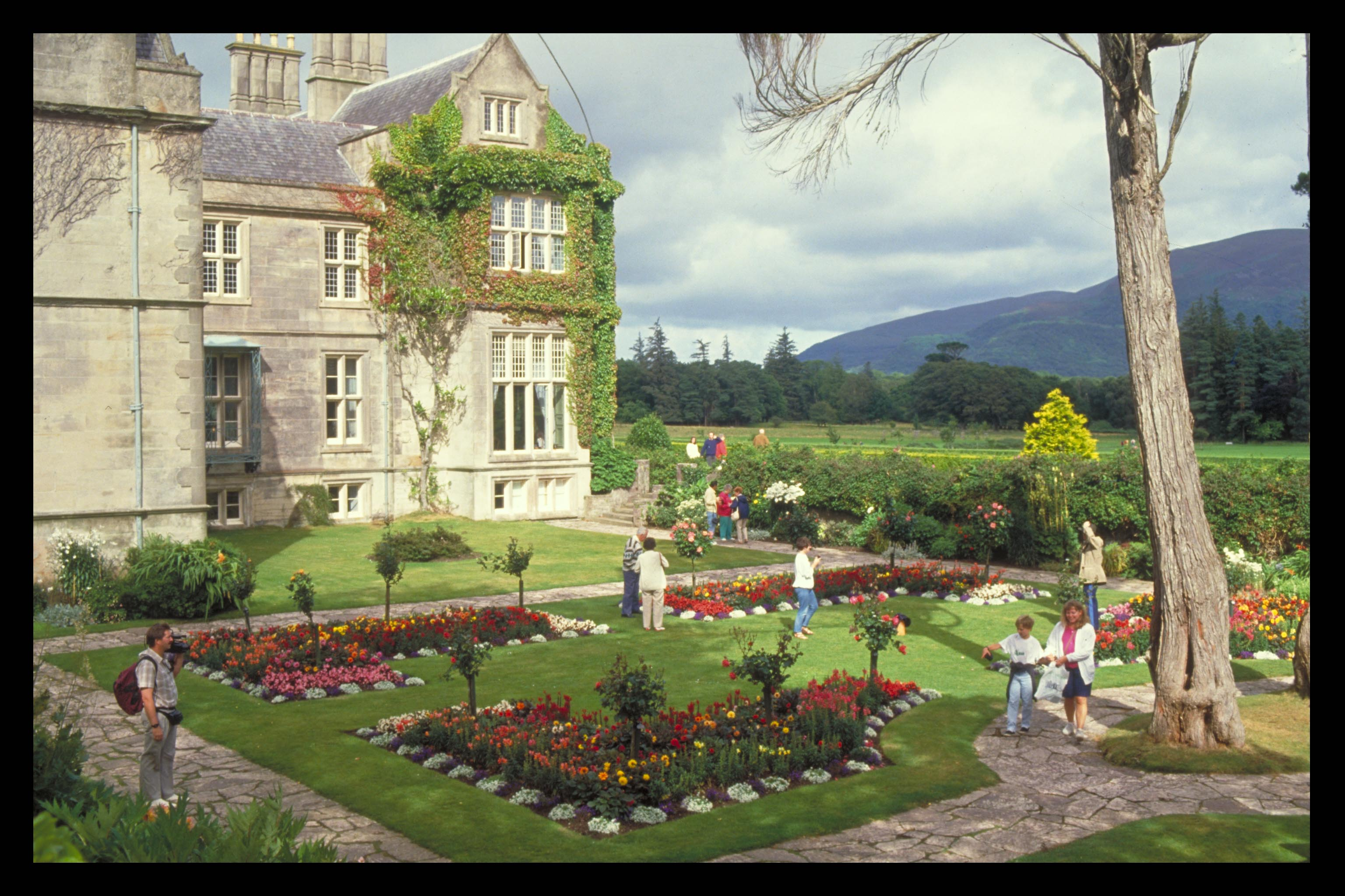 Things to Do - Muckross House