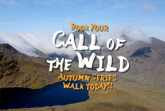 Call of the Wild - Autumn Series